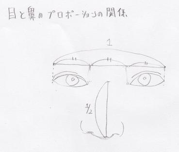 目と鼻のプロポーション