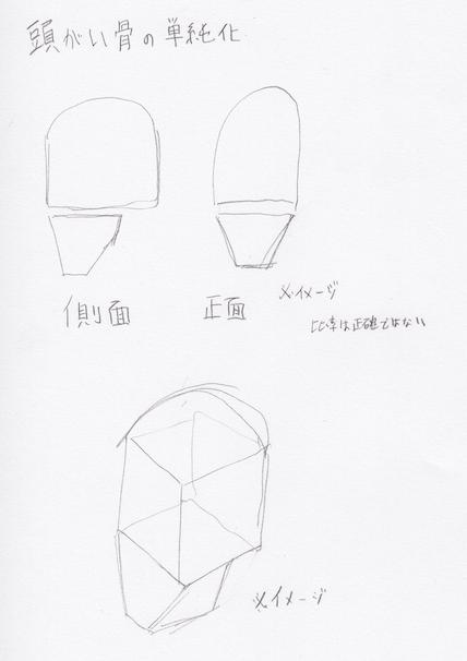 頭蓋の単純化、頭蓋の描き方1
