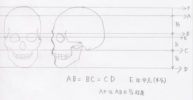 頭蓋の単純化、頭蓋の描き方2