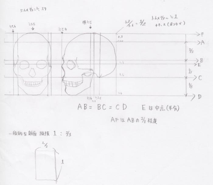 頭蓋の単純化、頭蓋の描き方3