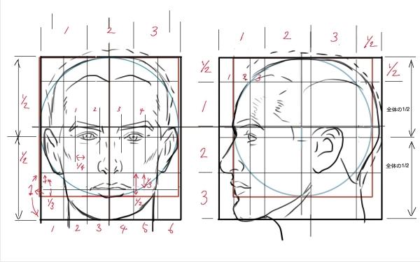 顔の比率3 ルーミス参考