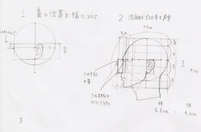 鼻の位置、鼻の幅、鼻の描き方、鼻の書き方、鼻の割合、鼻のプロポーション、鼻の黄金率1