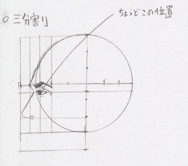 目の位置、目の幅、目の描き方、目の書き方、目の割合、目のプロポーション、目の黄金率2