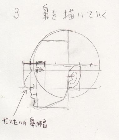 鼻の位置、鼻の幅、鼻の描き方、鼻の書き方、鼻の割合、鼻のプロポーション、鼻の黄金率4