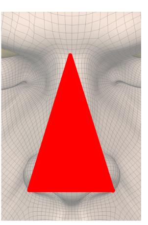 鼻は三角か?
