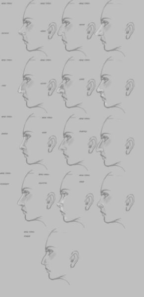 鼻を描き分け例