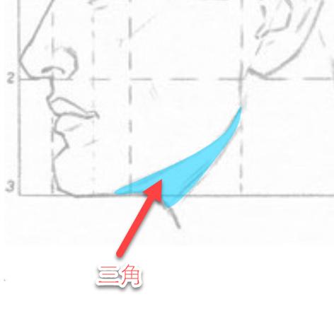 顎の下の三角