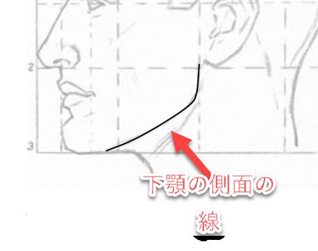 下顎の側面の影