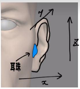 耳珠の位置関係