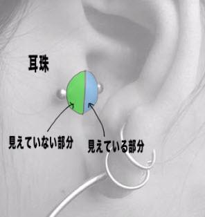 耳珠の形状