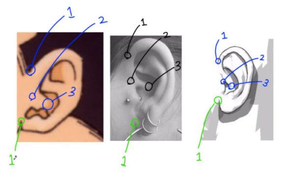 耳の描画はどこで終わるのか