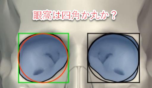 目の描き方・解剖学