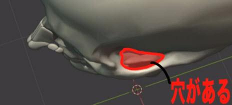 頬骨と側頭窩の関係