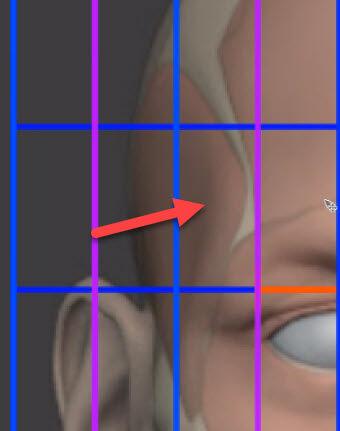 側頭窩の陰について