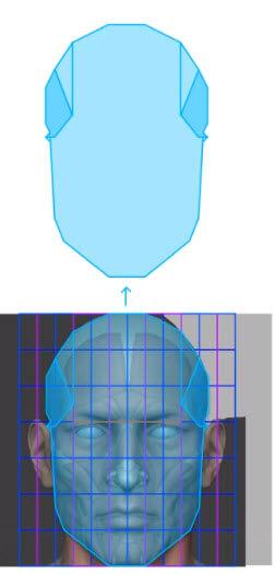 側頭線を利用した顔の構成
